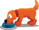 Dog eating at his bowl.