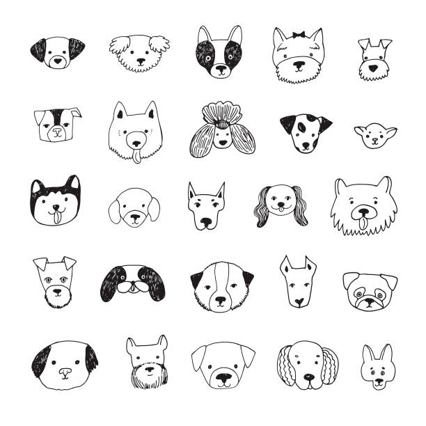illustrations, cliparts, dessins animés et icônes de set de chien visage cartoon vector illustrations - dog