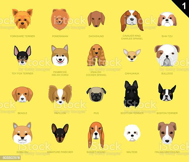 Dog faces icon cartoon vector id503302578?b=1&k=6&m=503302578&s=612x612&h=kn1dd4vlp82g8a7a6zzonvskfg wssojalcjg kn4b0=