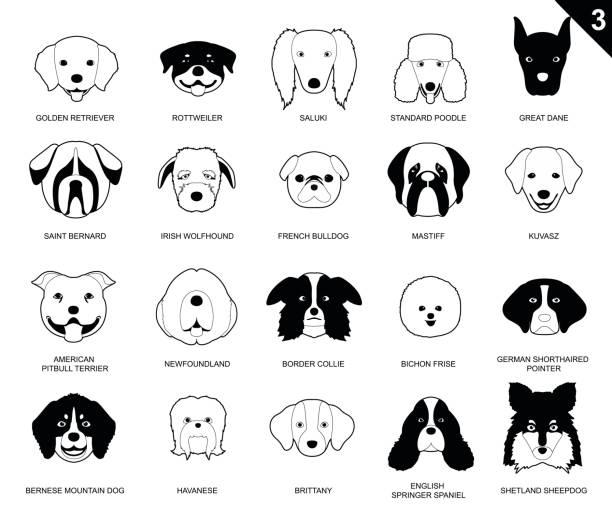 Dog Faces Stroke Monochrome Icon Cartoon 3 vector art illustration