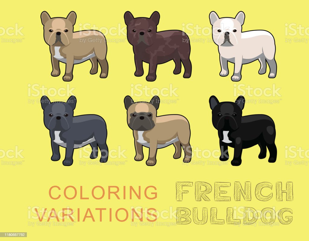 Dog French Bulldog Coloring Variations Cartoon Vector Illustration Stock Illustration Download Image Now Istock