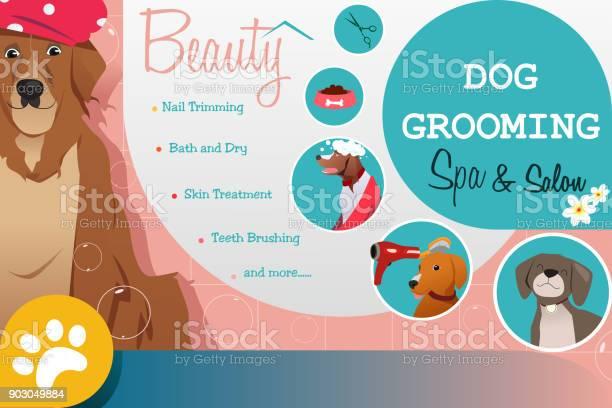 Dog grooming salon poster illustration vector id903049884?b=1&k=6&m=903049884&s=612x612&h=7smbudpql1ti38028 w3wjbiufwfnvkkhhos5ks7bbo=