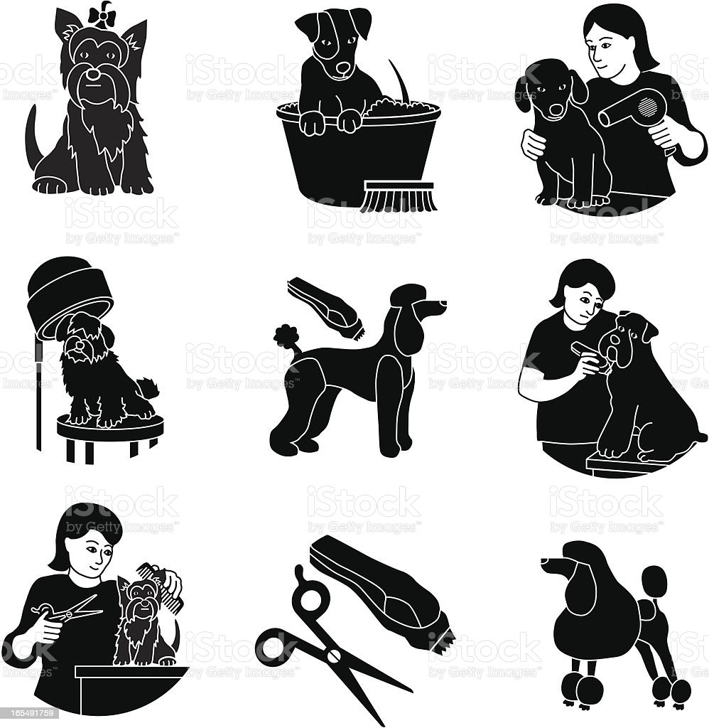 Dog Grooming Stock Illustration Download Image Now Istock