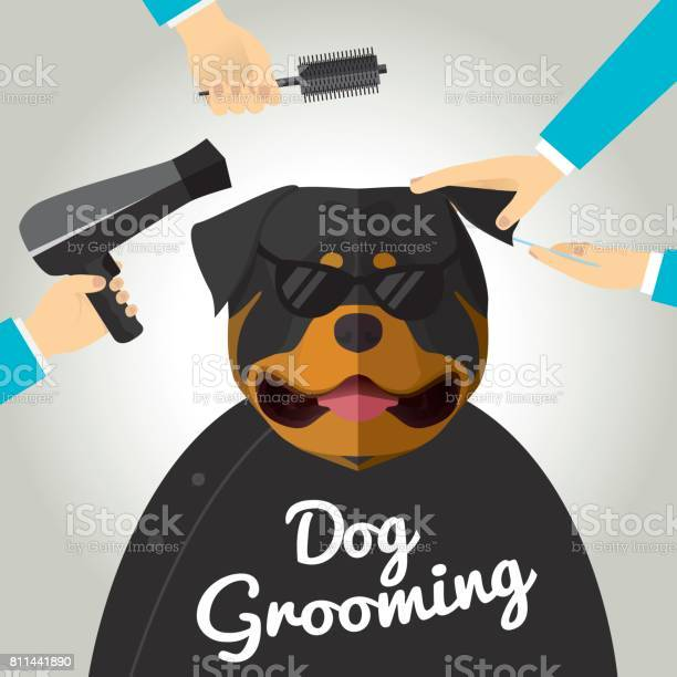 Dog grooming vector id811441890?b=1&k=6&m=811441890&s=612x612&h=k1mvdnin9z9 lgb wat0tqqal9jliqz64w nu17ny3c=
