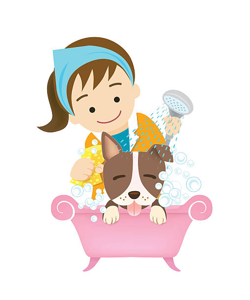 Best Groomer Illustrations, Royalty-Free Vector Graphics ...