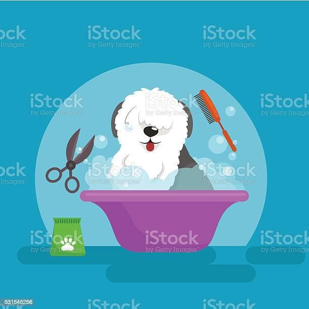 Dog hair hygiene vector illustration set pet grooming and care vector id531545256?b=1&k=6&m=531545256&s=612x612&h=lgttju3qpgrcgfkikkzvgsixzwgqhmasvz m10vo2y8=