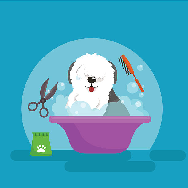 Dog hair hygiene. Vector Illustration Set, Pet Grooming and care vector art illustration