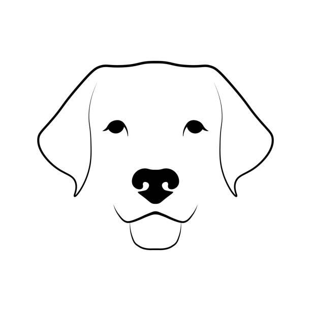 23 823 Animal Nose Illustrations Clip Art Istock