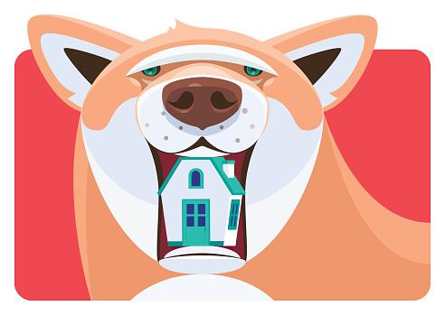 dog holding house