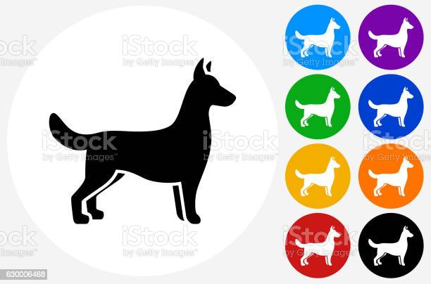 Dog icon on flat color circle buttons vector id630006468?b=1&k=6&m=630006468&s=612x612&h=uig9pyd9 5szitrej2bcldb4kd36dsyfjix g36gjci=