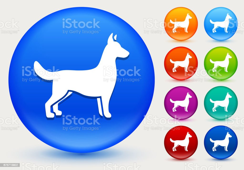 Dog Icon on Shiny Color Circle Buttons royalty-free dog icon on shiny color circle buttons stock vector art & more images of animal
