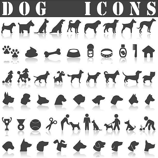 hund icon-set  - hundehalsbänder stock-grafiken, -clipart, -cartoons und -symbole