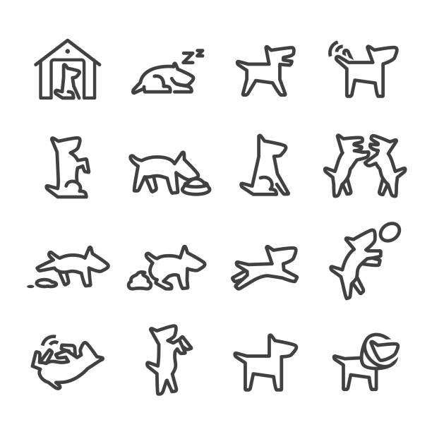 dog icons - line series - dog treats stock illustrations