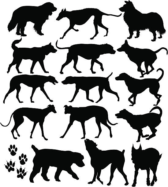 Dog Icons ( Vector ) Big dog breeds. Silhouette. svg stock illustrations
