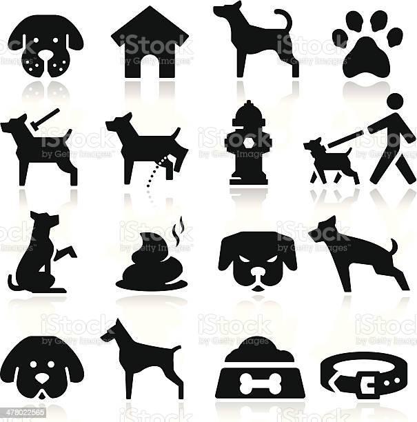Dog icons vector id478022565?b=1&k=6&m=478022565&s=612x612&h=ysr1i2xpqy8irawspluj x3i6fkdy682hwzemtog9zu=