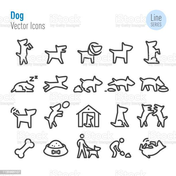 Dog icons vector line series vector id1135995107?b=1&k=6&m=1135995107&s=612x612&h=ple0tsasn265nwlehztm3tfwqg6juhndekov6to4o2k=