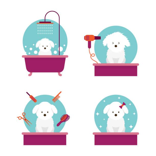 Dog in Grooming Shop or Salon vector art illustration
