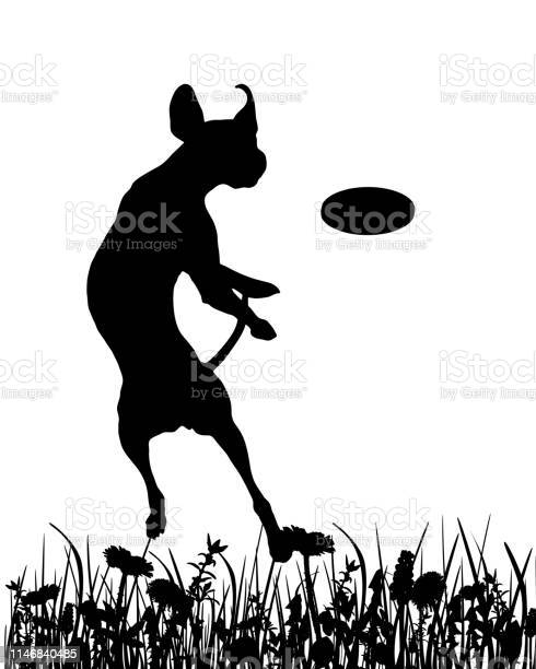 Dog in the meadow vector id1146840485?b=1&k=6&m=1146840485&s=612x612&h=9omppztqi2tamxxjz4rsp9cedw5jjov6xorm2urvckw=
