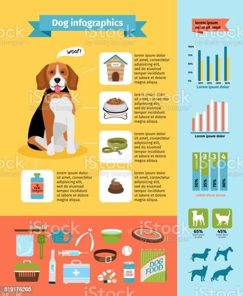Dog infographics vector id519176265?b=1&k=6&m=519176265&s=612x612&h=ucsu3c7xwmrqdd6xh5ko4yujpzgamglmkrxq1rdppse=
