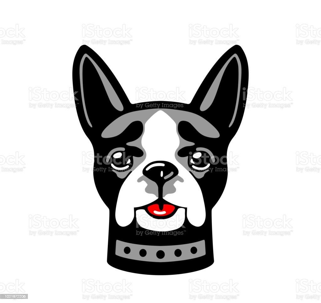 Dog isolated on white background. vector art illustration