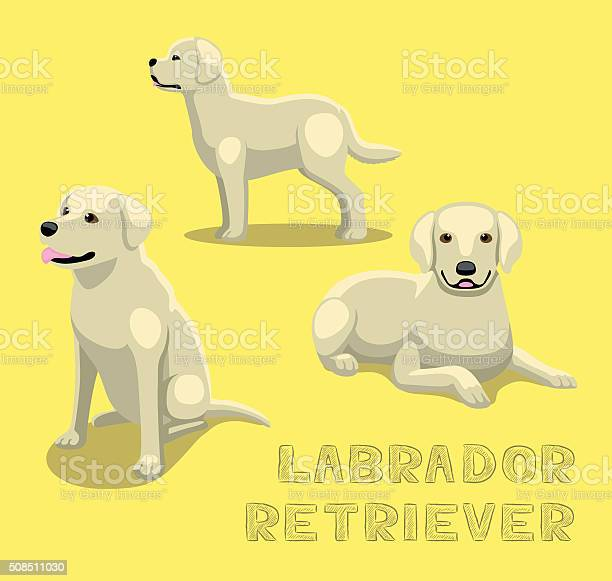 Dog labrador retriever cartoon vector illustration vector id508511030?b=1&k=6&m=508511030&s=612x612&h=o4jqo7v1koymd9yveix6zlojyyoakakbhivewjbkmgq=