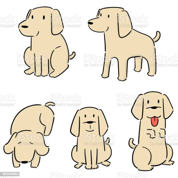 Pies Labrador Retriever - Stockowe grafiki wektorowe i więcej obrazów Bazgroły - Rysunek