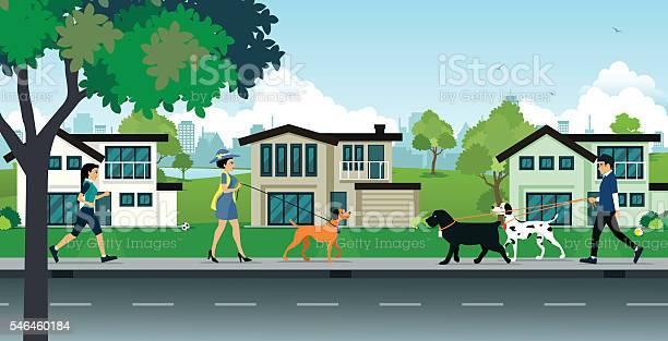 Dog leash in public parks vector id546460184?b=1&k=6&m=546460184&s=612x612&h=pu iwb0uqgvdx7bjvcybcgdgit2zrgsxf lgh7dvxhq=