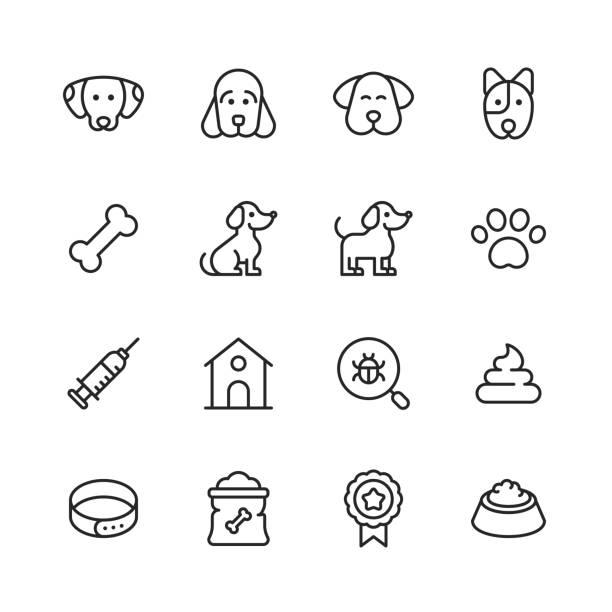 ikony linii psa. edytowalny obrys. pixel perfect. dla urządzeń mobilnych i sieci web. zawiera takie ikony jak pies, szczeniak, hodowla, zwierzę domowe, kość dla psa, strzykawka, odznaka, łapa dla psów, weterynarz, miska dla zwierząt domowych, karma - dog stock illustrations