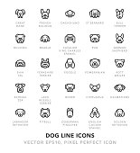 Dog Line Icons Vector EPS 10 File, Pixel Perfect Icons.