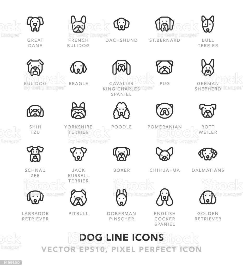 Dog Line Icons vector art illustration