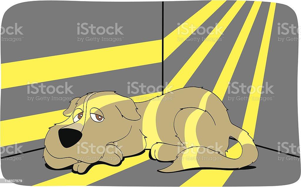 Dog lying down under sunbeam royalty-free stock vector art