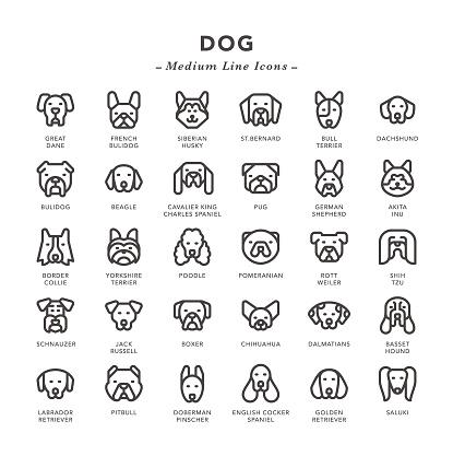 Dog - Medium Line Icons