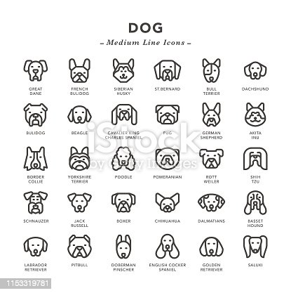 Dog - Medium Line Icons - Vector EPS 10 File, Pixel Perfect 30 Icons.