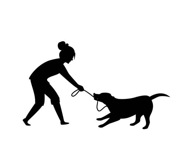ilustrações de stock, clip art, desenhos animados e ícones de dog misbehaving tugging biting on a leash during walking silhouette  vector illustration graphic scene - training