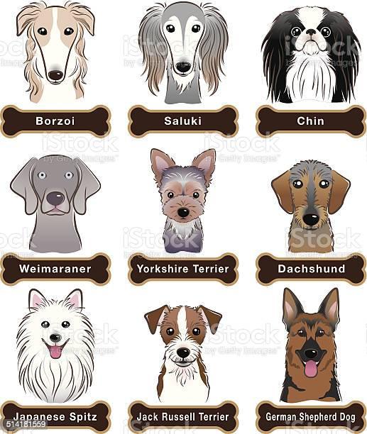 Dog nameplate vector id514181559?b=1&k=6&m=514181559&s=612x612&h=8d9r9q57czgafjgihckuhgkbzbnegyrr0zo0fl3wnlo=