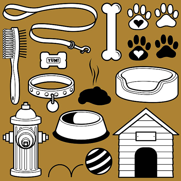 hund objekte - hundehalsbänder stock-grafiken, -clipart, -cartoons und -symbole
