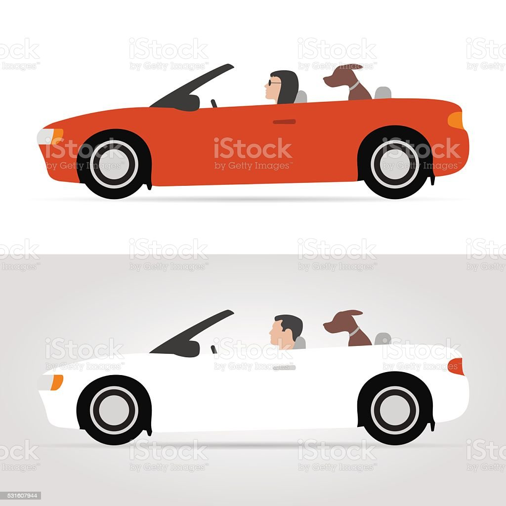 Dog on cabriolet vector art illustration