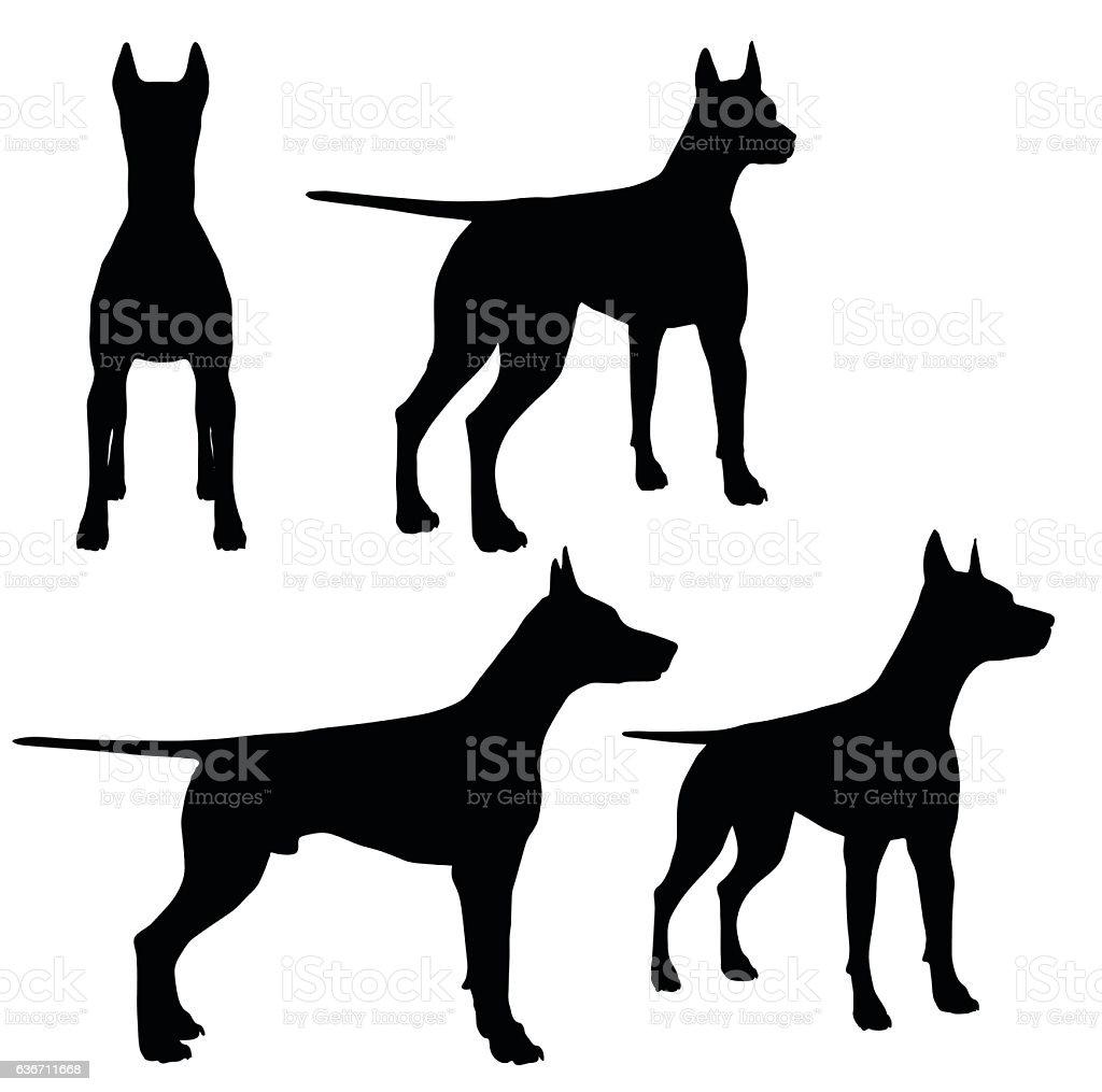 dog on white background vector art illustration