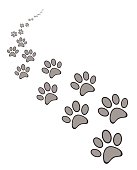 dog or cat paw print on white background vector eps 10