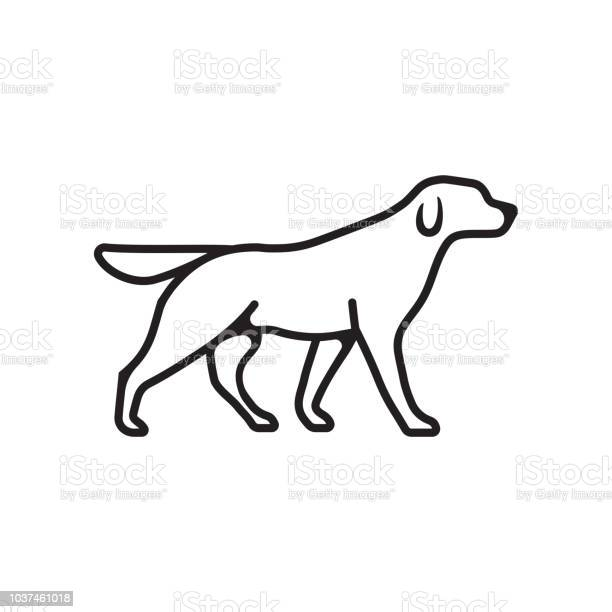 Dog outline vector isolated flat or linear pet dog logo icon vector id1037461018?b=1&k=6&m=1037461018&s=612x612&h= g3irs0myl4pmso78tyyplibxarbc52eycnf6xzr5dm=