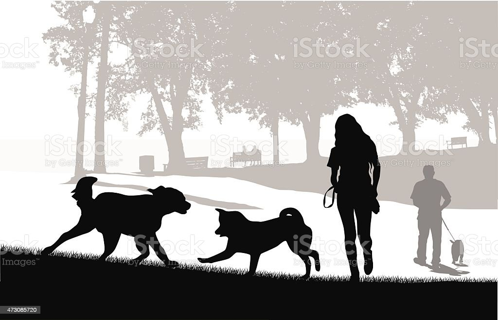 Dog Park amis - Illustration vectorielle