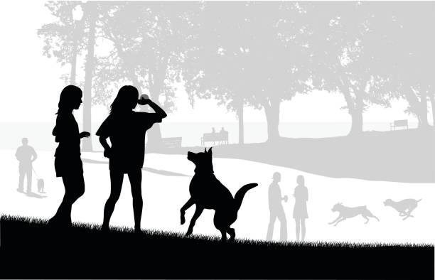 Dog Park Play Silhouette vector illustration or two girls playing ball with their dog at the city park waterfront stock illustrations