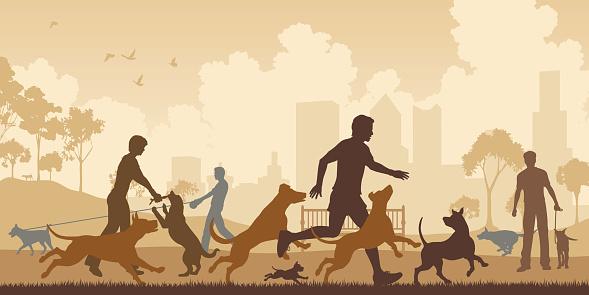 Dog Park Stock Illustration - Download Image Now