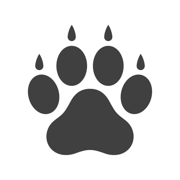 Dog paw icon Vector icon. EPS 10, HD JPEG 3000 x 3000 px paw stock illustrations