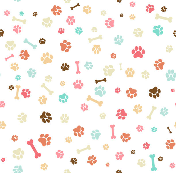 Dog paw print seamless. Template for your design, wrapping paper, card, poster, banner, flyer. Vector illustration. Isolated on white background Dog paw print seamless. Template for your design, wrapping paper, card, poster, banner, flyer. Vector illustration. Isolated on white background dog stock illustrations