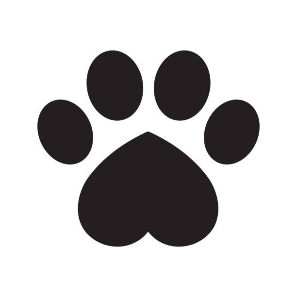 köpek pençe vektör ayak izi simgesi kalp logosu sevgililer sembolü grafik illüstrasyon fransız buldozer kedi ayı çizgi film - dog stock illustrations