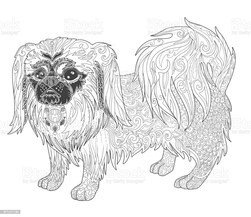 Dog Pekingese Doodle Illustration Page For Adult Coloring Book Royalty Free