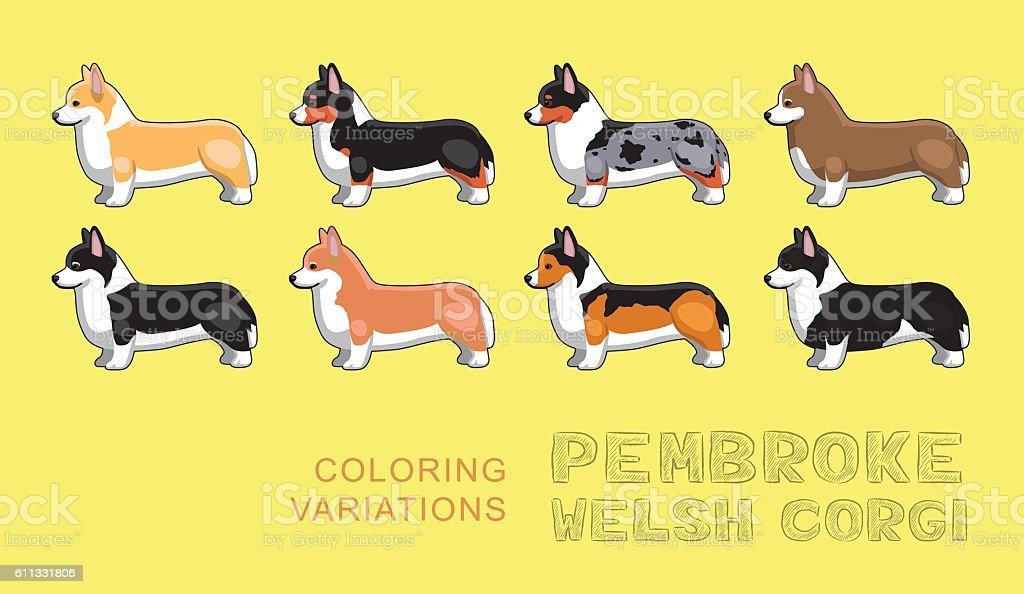 Dog Pembroke Welsh Corgi Coloring Variations Vector Illustration vector art illustration