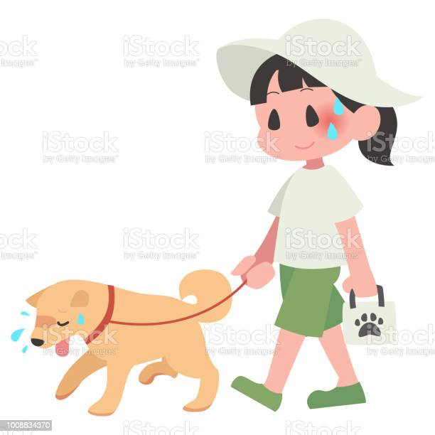 Dog pet walks summer hot exhaustion female vector id1008834370?b=1&k=6&m=1008834370&s=612x612&h=qkbiptpq4fgnfznbsmwxemh4gqnh6drrzp4p5a95rrm=