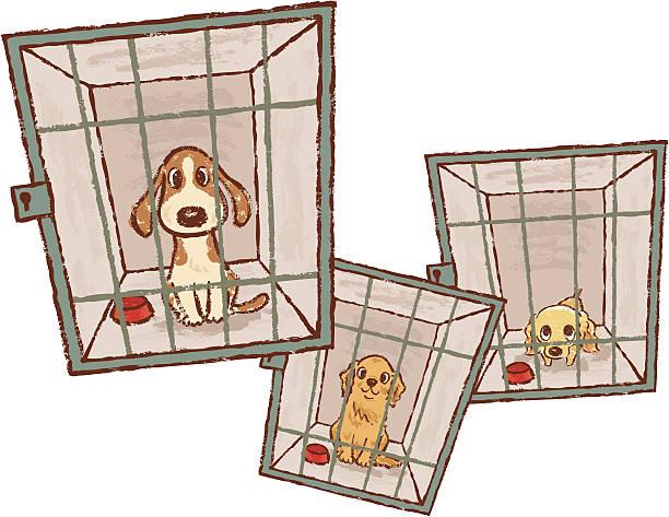 動物保護施設 イラスト素材